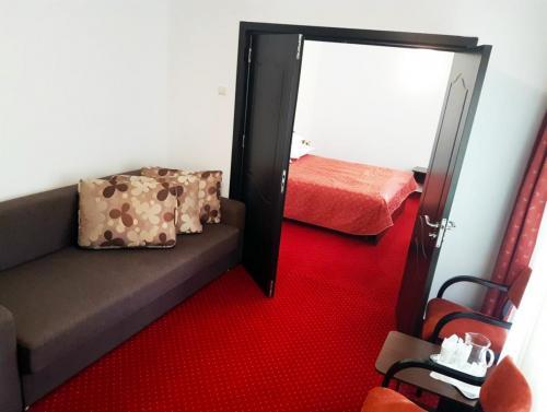 Hotel Cristal Sinaia